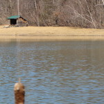 lean to at pond