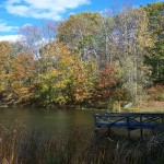 pond in autumn dock view